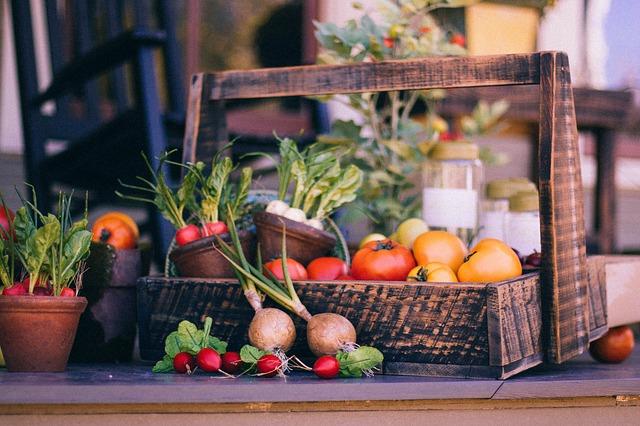 panier-legumes-potager
